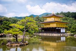 Of Course, Golden Shrine