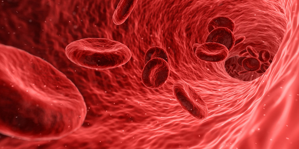 blood-1813410.jpg
