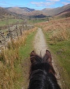 lakeland pony treks 1.jpg