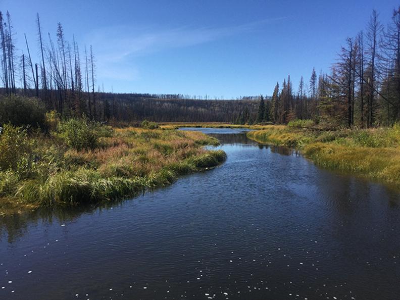 cariboo 3 creek 105.png