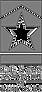 TAoB logo_edited.png