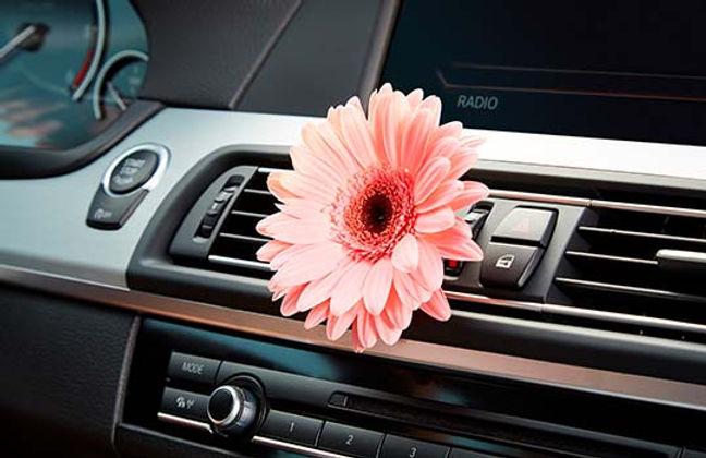 Auto-Desinfektion-Geruchsentfernung-Fahrzeugaufbereitung-Auto-Innenraum-Raucher-unangenehm
