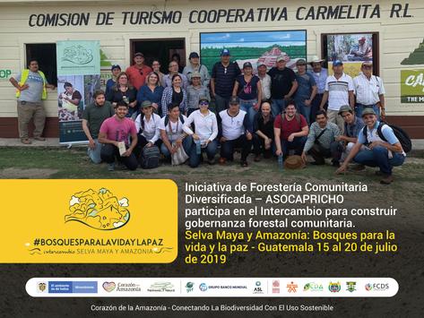Iniciativa de Forestería Comunitaria Diversificada – ASOCAPRICHO participa en intercambio