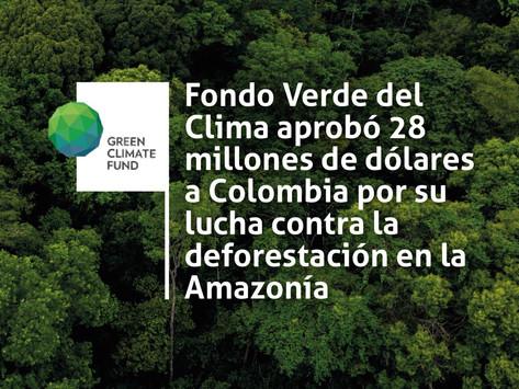 Fondo Verde del Clima aprobó 28 millones de dólares a Colombia por su lucha contra la deforestación