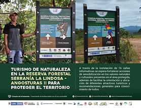 Reserva Forestal Serranía la Lindosa - Angosturas II.jpg