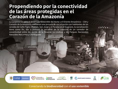 Propendiendo por la conectividad de las áreas protegidas en el Corazón de la Amazonía