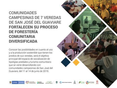 Comunidades campesinas fortalecen su proceso de Forestería Comunitaria Diversificada