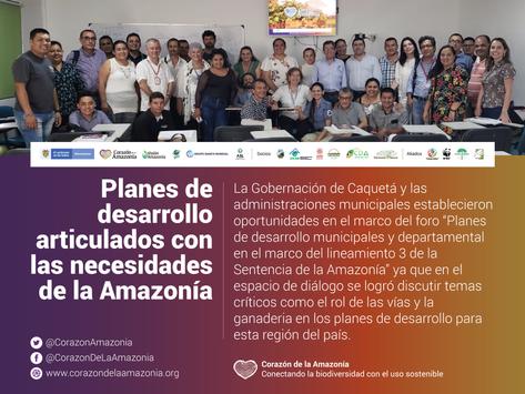 Planes de desarrollo articulados con las necesidades de la Amazonía