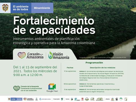 Instrumentos ambientales de planificación estratégica y operativa para la Amazonia colombiana
