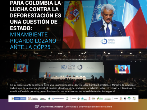 Para Colombia la lucha contra la deforestación es una cuestión de Estado