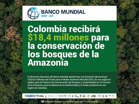 Colombia recibirá $18,4 millones para la conservación de los bosques de la Amazonía.