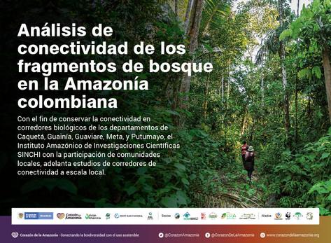 Análisis de conectividad de los fragmentos de bosque en la Amazonía colombiana