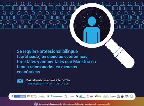 Se requiere profesional bilingüe (certificado) en ciencias económicas, forestales y ambientales