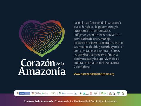 Proyecto GEF Corazón de la Amazonía