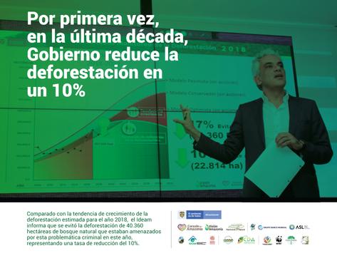Por primera vez, en la última década, Gobierno reduce la deforestación en un 10%