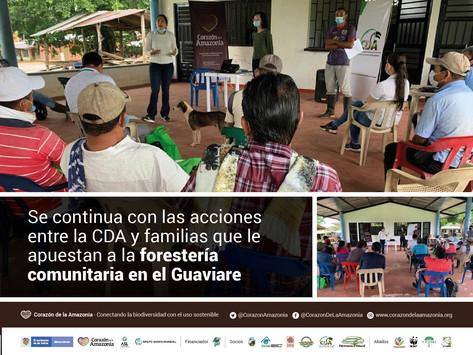 Se continua con las acciones entre la CDA y familias que le apuestan a la forestería comunitaria