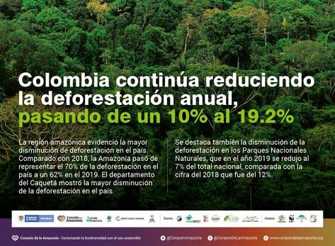Colombia continúa reduciendo la deforestación anual, pasando de un 10% al 19.2%
