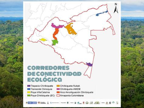 Corredores de Conectividad Ecológica