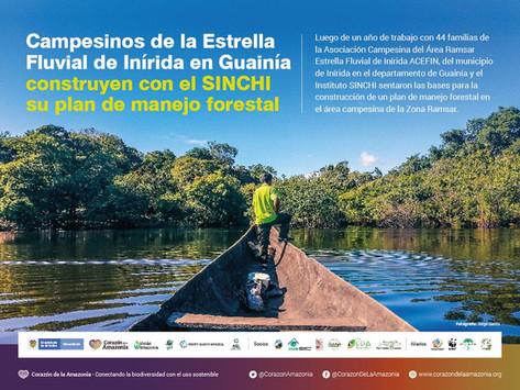 Campesinos de la Estrella Fluvial de Inírida en Guainía construyen su plan de manejo forestal