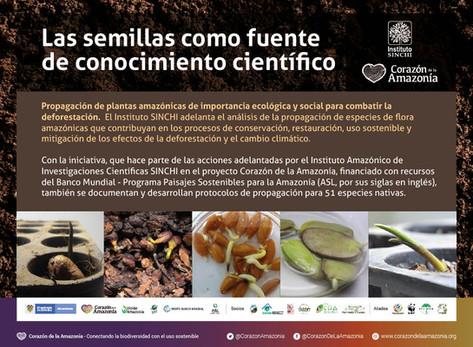 Las semillas como fuente de conocimiento científico