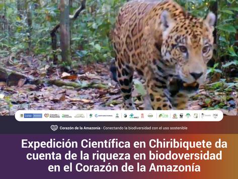 Expedición Científica en Chiribiquete da cuenta de la riqueza en biodoversidad en la Amazonía