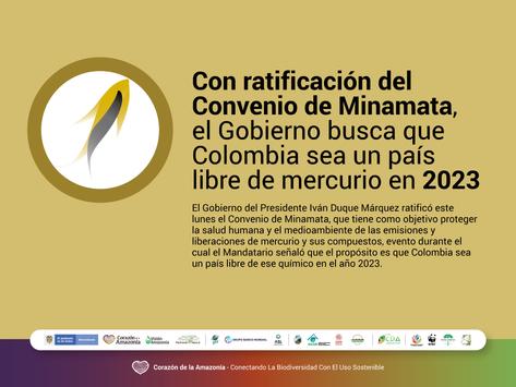 Con ratificación del Convenio de Minamata, Gobierno busca que Colombia sea un país libre de mercurio