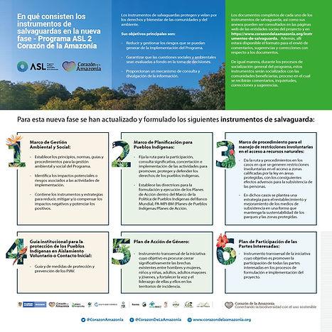 salvaguardas_CORAZÓN_DE_LA_AMAZONÍA-01