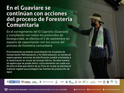 En el Guaviare se continúan con acciones del proceso de Forestería Comunitaria