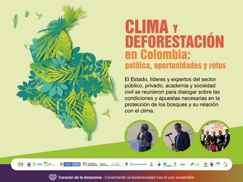 Clima y deforestación en Colombia: política, oportunidades y retos.
