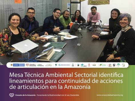 Mesa Técnica identifica lineamientos para continuidad de acciones de articulación en la Amazonía