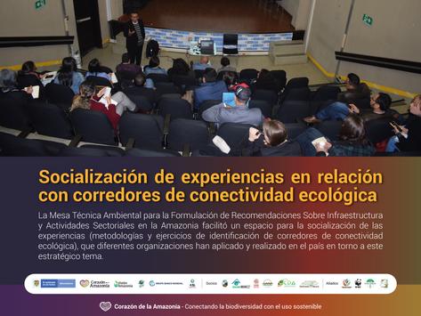 Socialización de experiencias en relación con corredores de conectividad ecológica