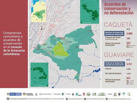 Compromiso comunitario y acuerdos de conservación en el corazón de la Amazonia colombiana.