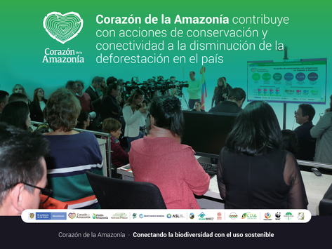 Contribuimos con acciones de conservación y conectividad a la disminución de la deforestación