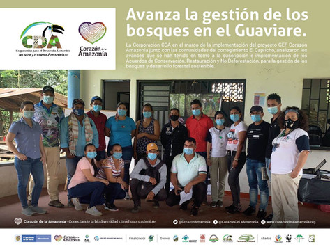 Avanza la gestión de los bosques en el Guaviare.