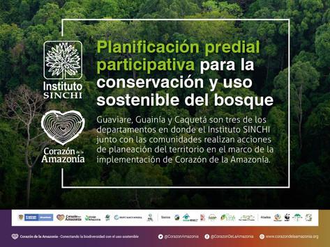 Planificación predial participativa para la conservación y uso sostenible del bosque