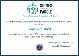 certificat de competences.png