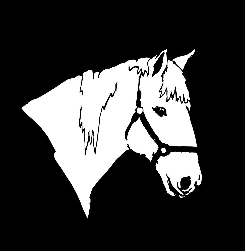 HorseJo-2_EMB2-17_1