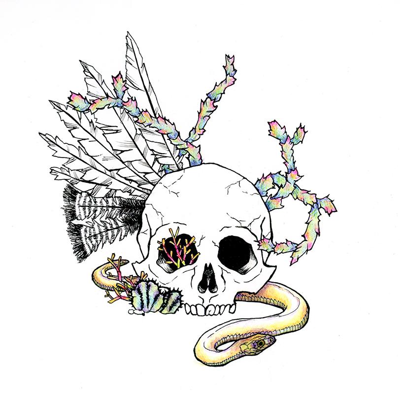 Skull, Snake & Cactii Together Again