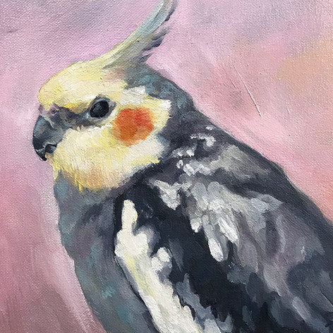 Pigwidgeon Needletoes (Detail)
