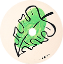 button_green_edited.png