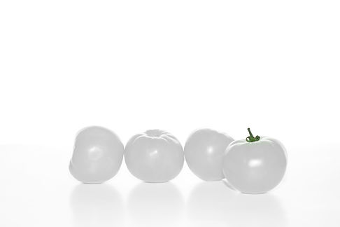 Group of White Tomatoes .jpg