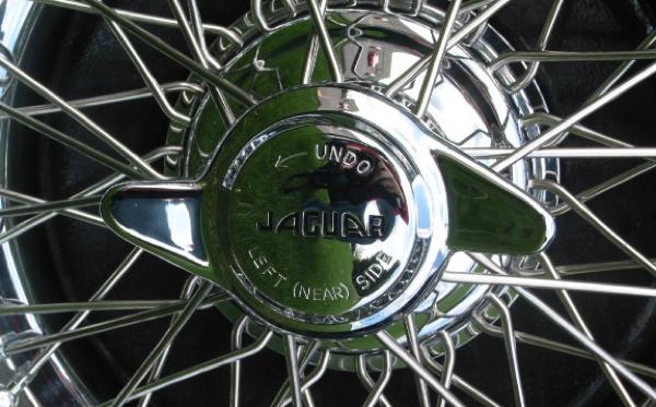 Jaguar 1953 detail 2