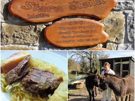 Rural Bliss at the Agrotourism Stara Štala (Istria)