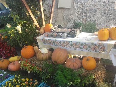 Bundevijada - Festival of Pumpkins in Vrbovsko
