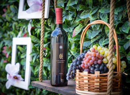 Wine Harvest on Oleander Terrace