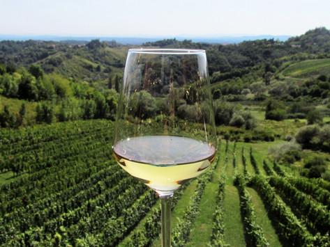 Jastrebarsko Wine Festival