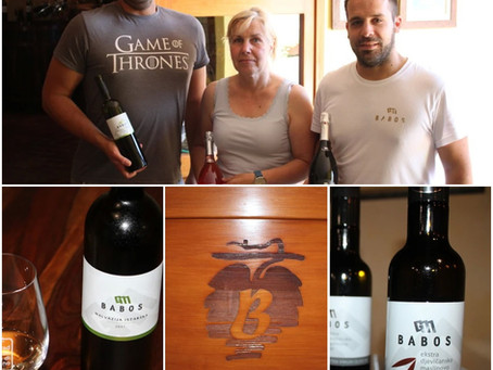 Babos - Wine Taste of Vodnjan