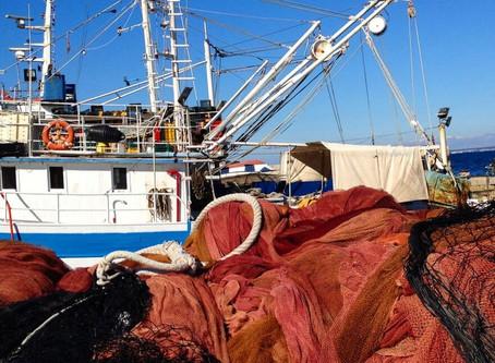 Kaljani - najbolji ribari na svijetu