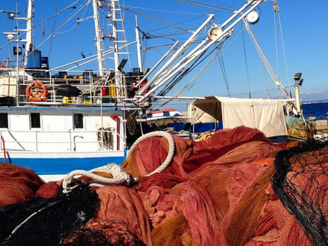 Kaljani - the best fishermen in the world