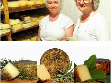 Born from wind and rock: Cheese from Magriž dairy, Kornić